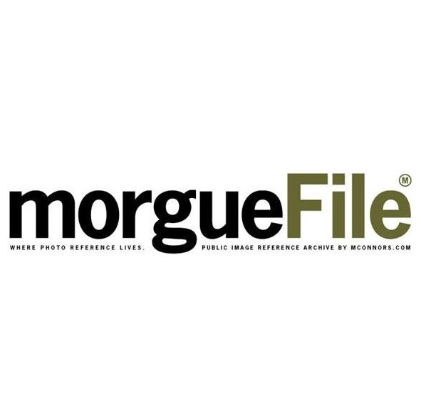 Banco de Fotos com Rede Social Morguefile