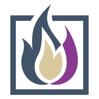 Questionários Personalizados para Site ou Blog Fyrebox