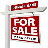 Comércio e lucro com registro de domínios